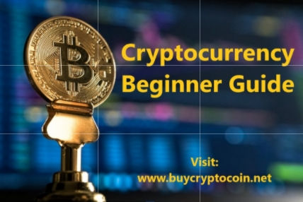 Cryptocurrency Beginner Guide
