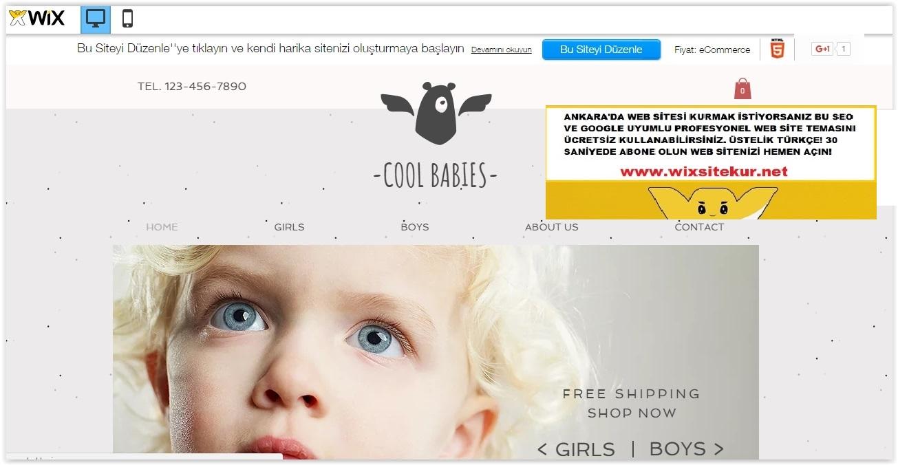 Ankara web tasarım (8)