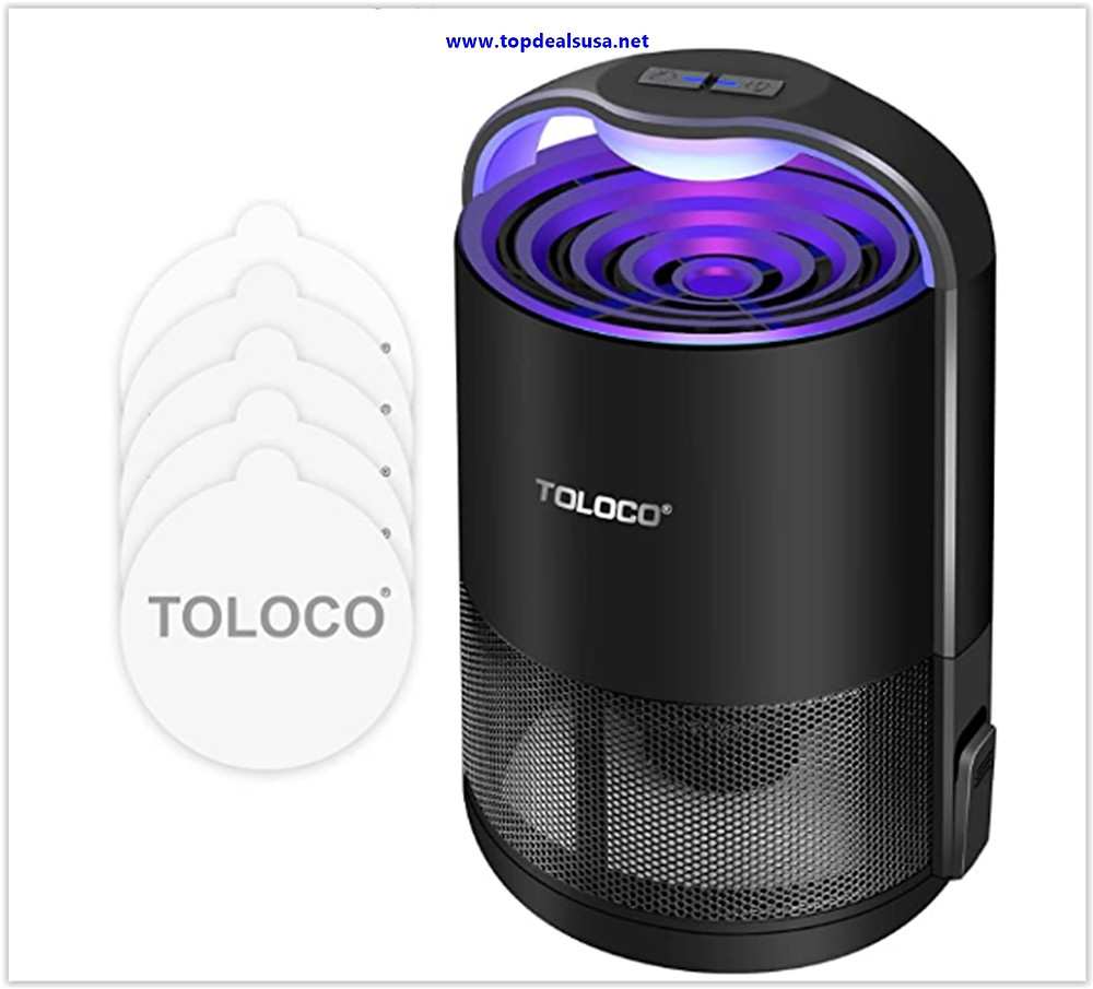 Best Buy TOLOCO Indoor Insect Trap Lamp for Small Moths, Gnat, Mosquito Trap