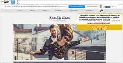 Mersin web tasarım (5)