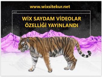 Wix saydam video özelliği ile başarılı ve dikkat çekici web siteleri oluşturun