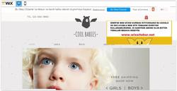 İzmir web tasarım (11)