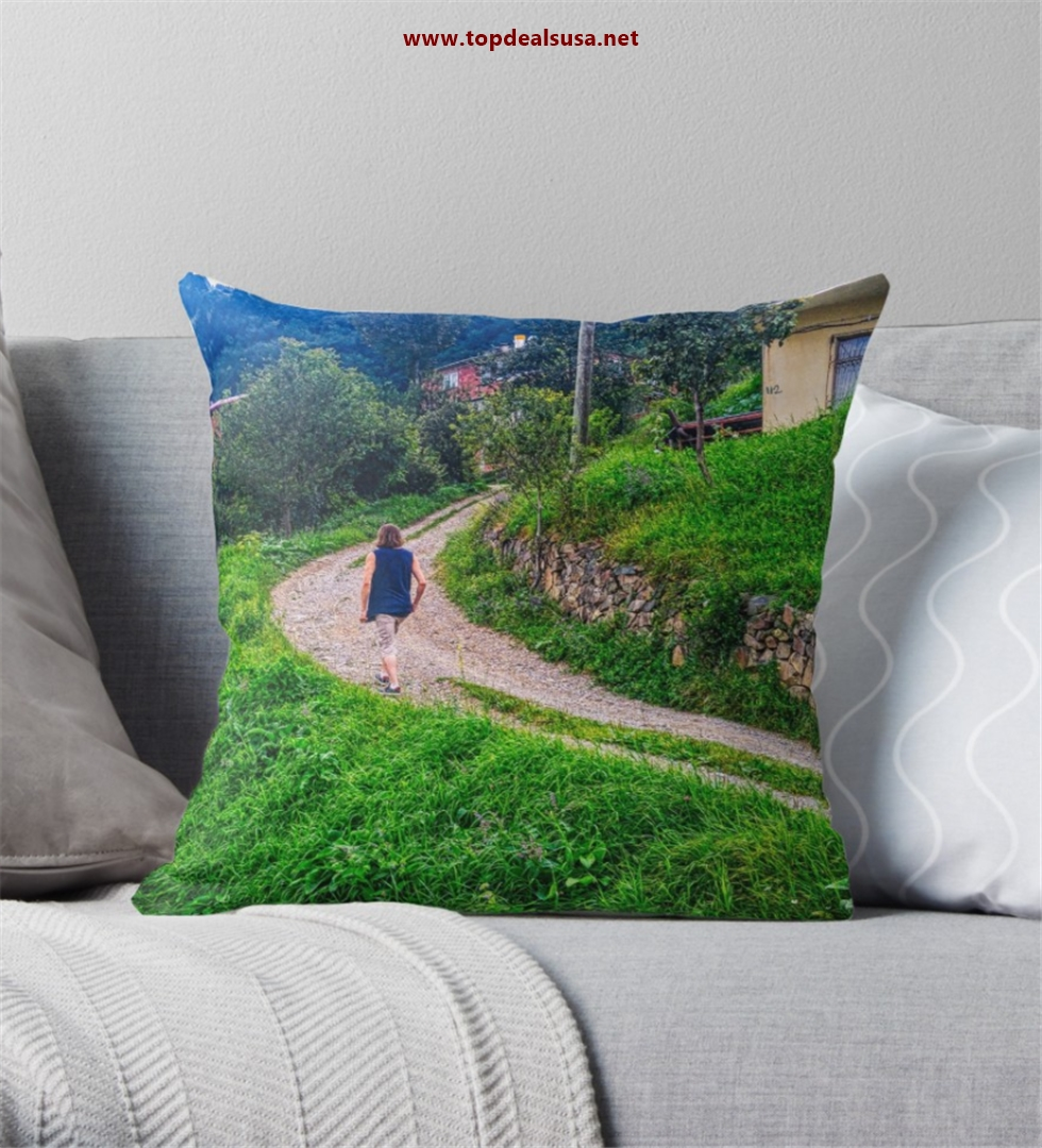 Wonderful village road Throw Pillow