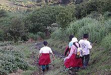 katudou2011.jpg