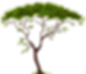 1495753063Exotic-Tree-PNG-Clip-Art.png