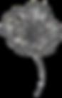 Blossom4.No Background copy.png