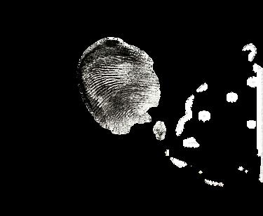 Fingerabdruck_edited_edited_edited.png