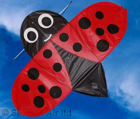 Ladybird Pocket Kite