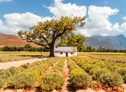 Farming God's way: the right way to farm.