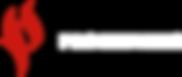 logo-prometheus-ico.png