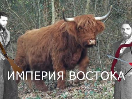 История о том, как Османы чуть Крым Не Потеряли I Империя Кёсем