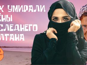 Что стало с жёнами последнего султана? ∣ Гарем Османского Хана