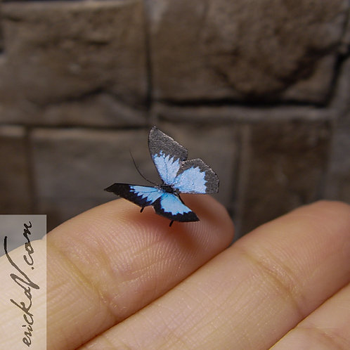 Blue and Black Butterfly #1 Miniature