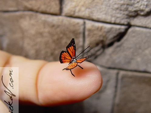 Tiny miniature Monarch Butterfly