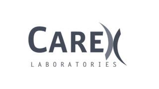 carex.jpg