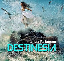 Destinesia Cover.jpg