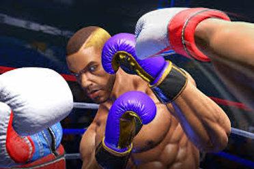 Virtual Reality Boxing Simulator Rental
