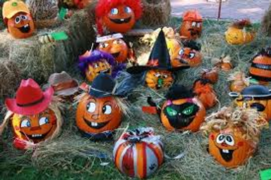 Pumpkin Painting Novelties For Rent