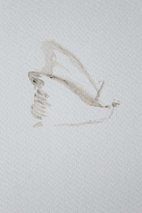 Edith Dormandy, 'Moth Small: III', 2018, watercolour on paper, 19x14cm