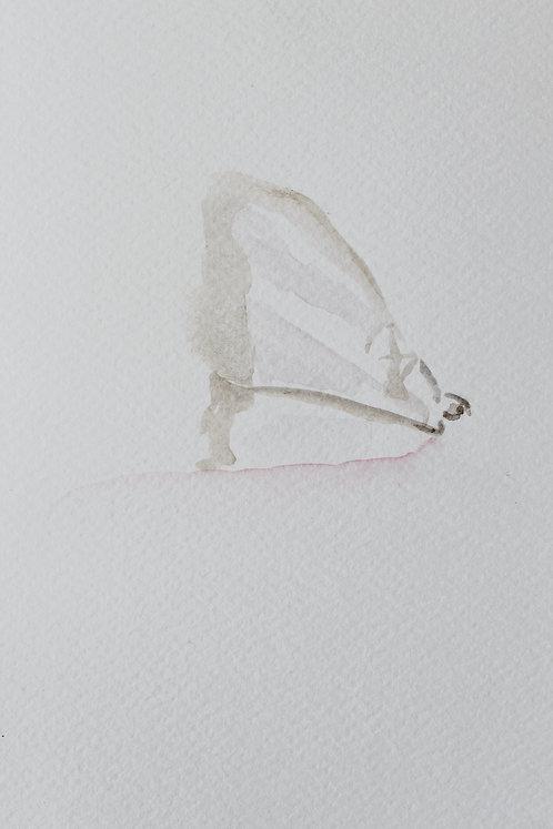 Edith Dormandy, 'Moth Small: VIII', 2018, watercolour on paper, 19x14cm