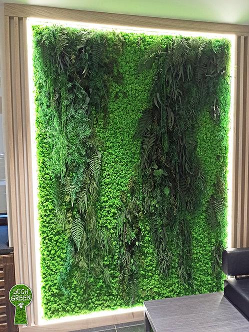 Стены из стабилизированного мха ягель и растений