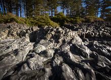 REGIONS_Cordilliera_Cox_Bay_LowTide_Rock