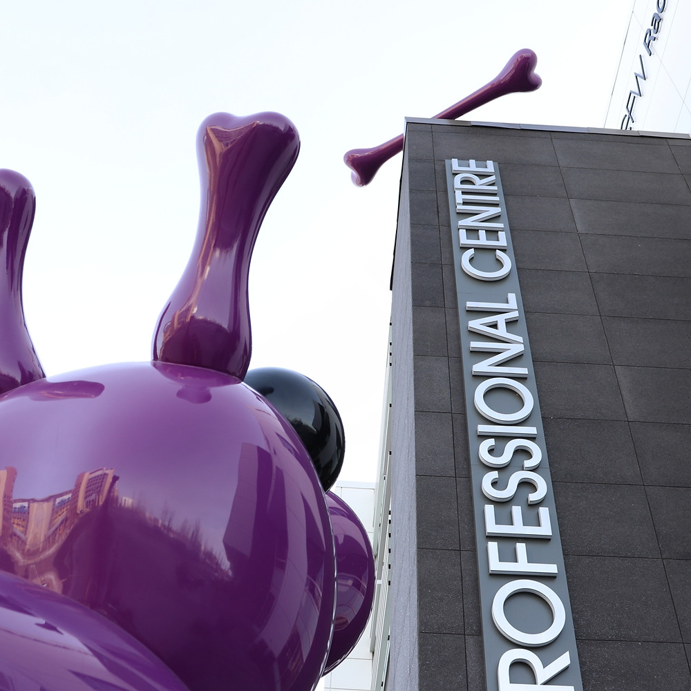 Excellent art display in Calgary.  Boney the purple dog (and his bone).  Photo by Mike LaValley