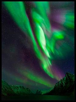 Aurora_Kanger_WEbsite - 2.jpg