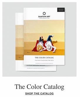 Saatchi Art The Color Catalog