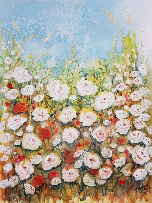White Rambling Roses