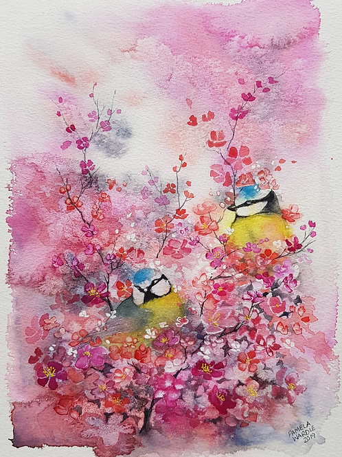 Birds in blossom - Blue Tits