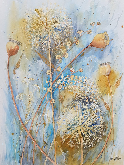 Allium and poppy seed heads - SOLD