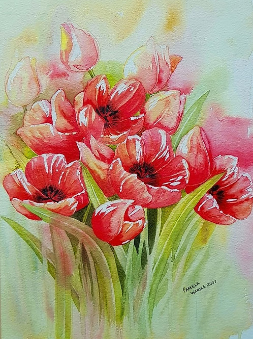 Scarlet Tulips - Print