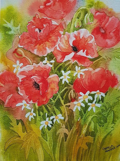Poppies - Print
