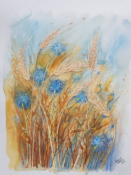 Corn and cornflowers