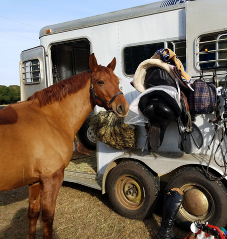 Ties to the trailer with no worries.