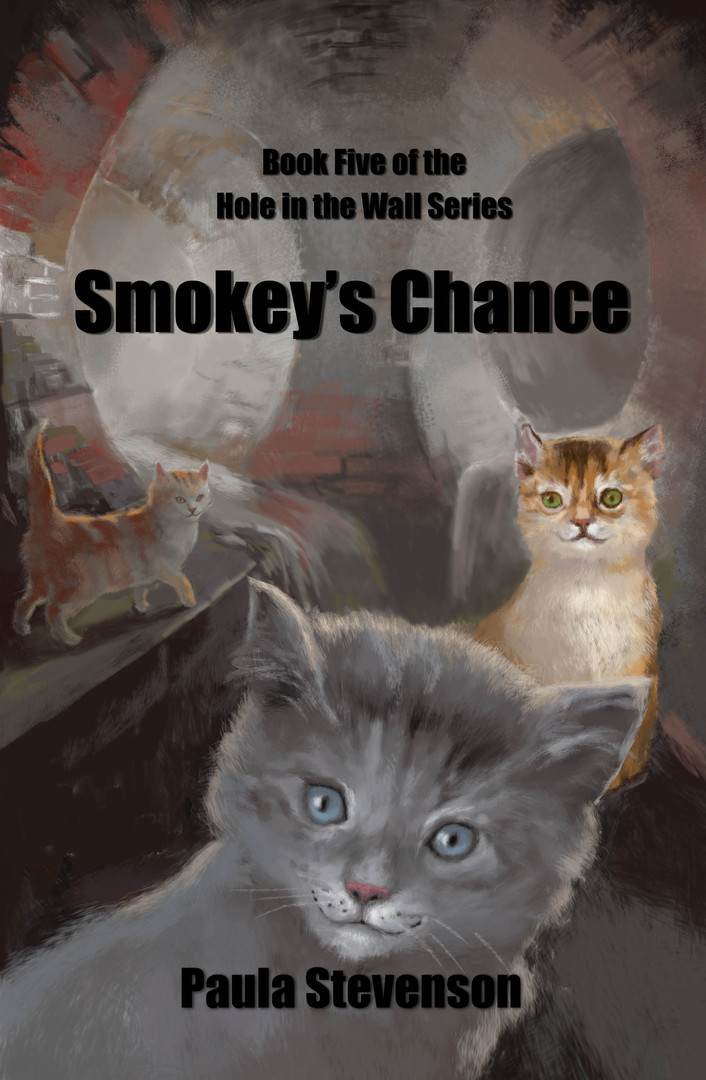 Smokey's Chance - cover