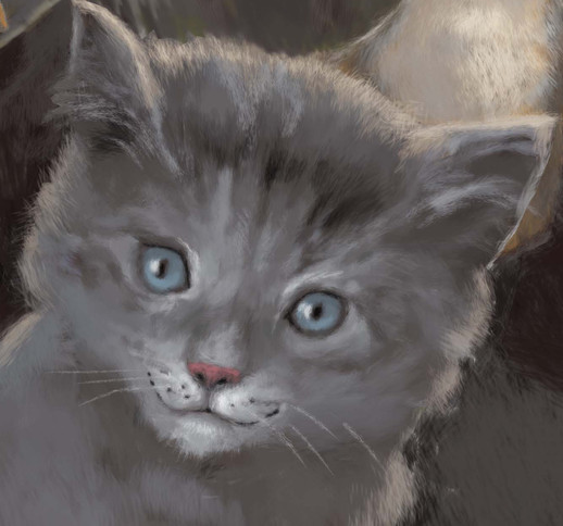 Smokey's Chance - book cover detail