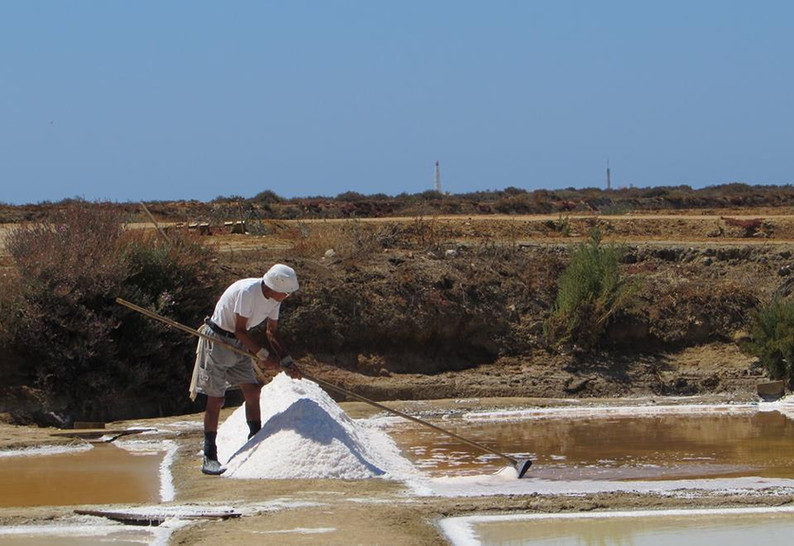 Visit to the Salt Pans