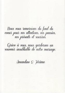 Mariage MICHAUD Jérôme & Amandine (Château d'Avully) (18-07-2015) 2