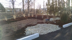 Wetland Replication