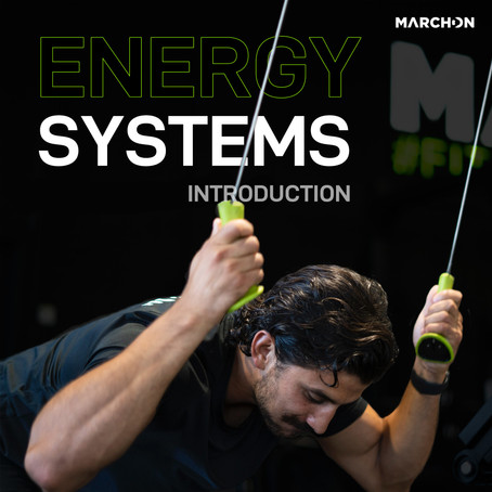 Introduction to Energy Systems and Energy Systems Training/Development