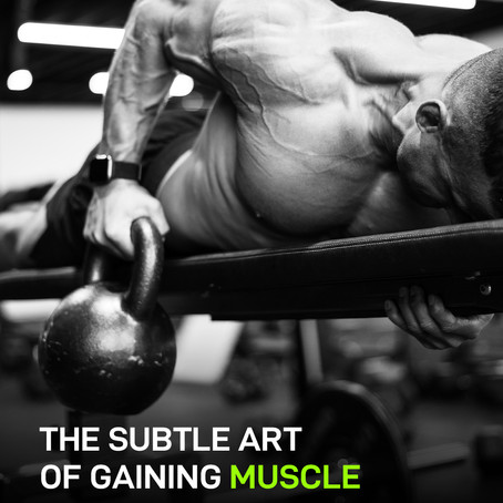 THE SUBTLE ART OF GAINING MUSCLE
