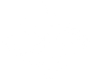 Logo_yogagold_weiss_web.png