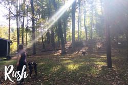 rush fetch