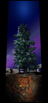 COSMIC TREE MASTER SEQUENCE_03803.png