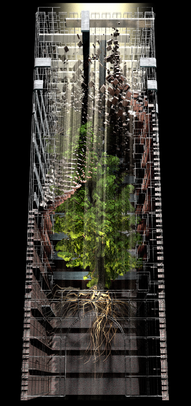 COSMIC TREE MASTER SEQUENCE_05534.png