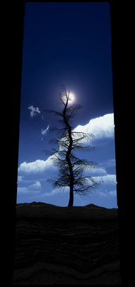COSMIC TREE MASTER SEQUENCE_02904.png