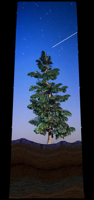 COSMIC TREE MASTER SEQUENCE_03041.png