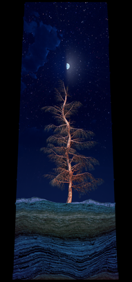 COSMIC TREE MASTER SEQUENCE_02937.png